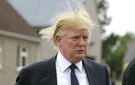 Trumphair 2 New
